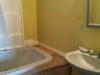 Master Bath (bedroom 1)